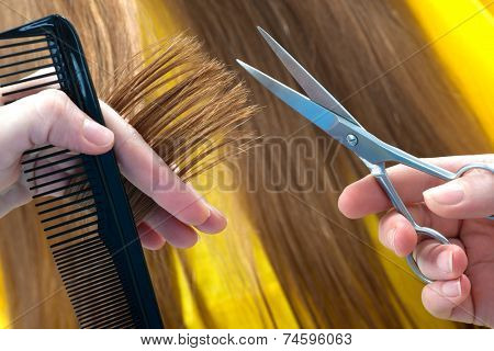 hands of the hairdresser cutting woman�?�¢??s  hair