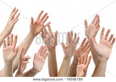 Close-up of several human hands raised on white background