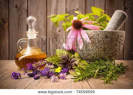 Healing herbs with mortar and bottle of essential oil on wood