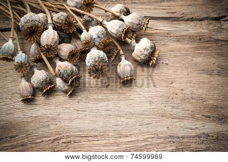 Floral background with dried poppies heads on old wooden