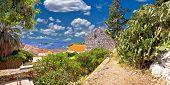 pic of cactus  - Island of Hvar coast view with cactus and palm tree Dalmatia Croatia - JPG