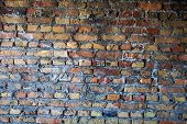 image of mortar-joint  - The brick wall with rich and various texture - JPG