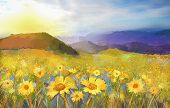 picture of daisy flower  - Daisy flower blossom - JPG