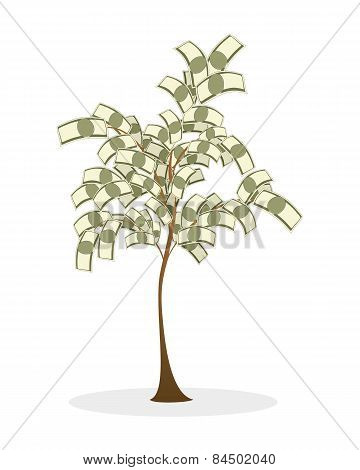 Lush Money Tree