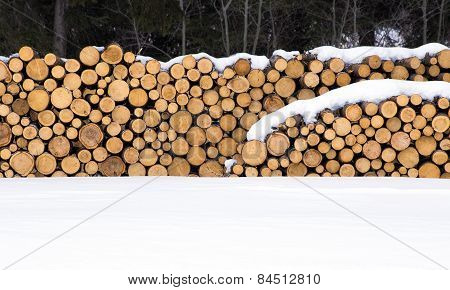Stockpiled cut wood logs