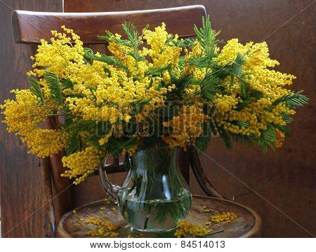 Still-life With A Mimosa Bouquet