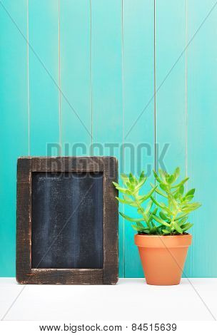 Green Plant Beside Chalkboard Leaning On The Wall