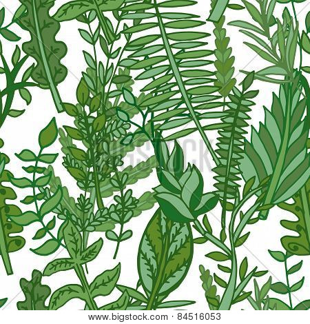 Herbal Pattern. Hand Drawn Vector Illustration
