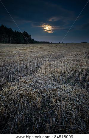 Stubble Field Under Rising Moon