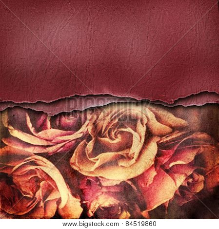 Grunge abstract background with roses and paper