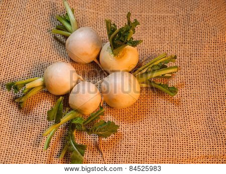 Salad turnips on burlap
