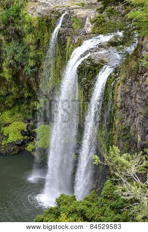 A scenic view of Whangarei waterfall