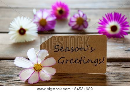 Label With Text Seasons Greetings With Cosmea Blossoms