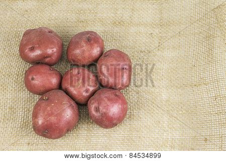 Red Skin Potatoes