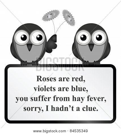 Hay Fever Poem