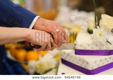 bride and groom are Slicing the wedding cake