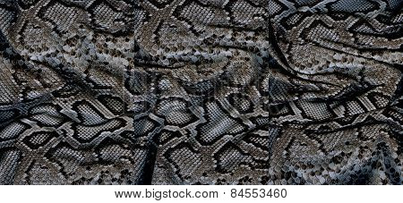 Set Of Snakeskin Textures