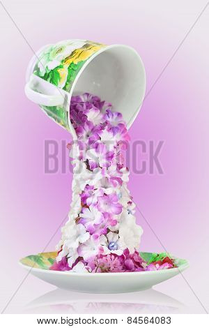 flowers  tea in cup