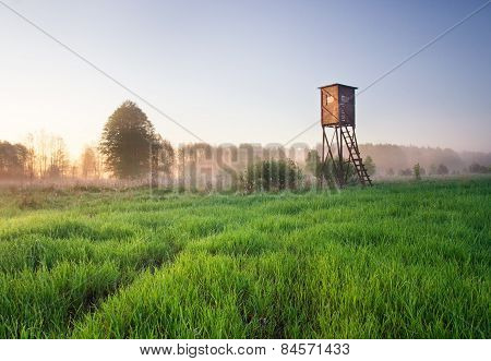 Raised Hide On Foggy Meadow