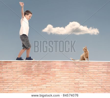 little boy walking in balance on a wall