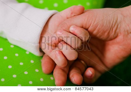 Hand of a little baby in mother's