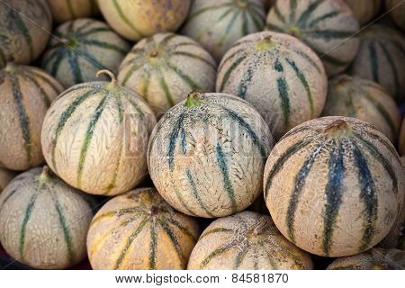 Ripe Fresh Melons Pile In A Farmers Market