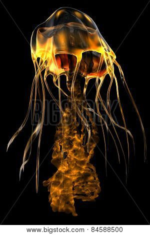 Glow Gold Jellyfish