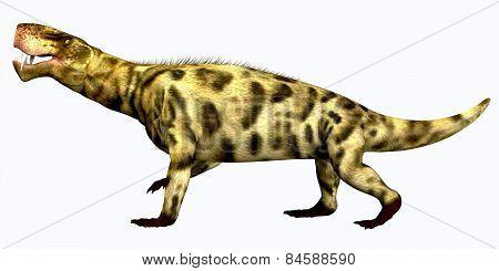 Inostrancevia Permian Reptile
