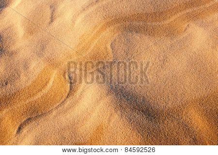 Beach Or Dunes Sand.background