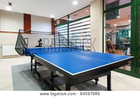 Interior Of An Entertainment Room, Tennis Table Or Ping Pong
