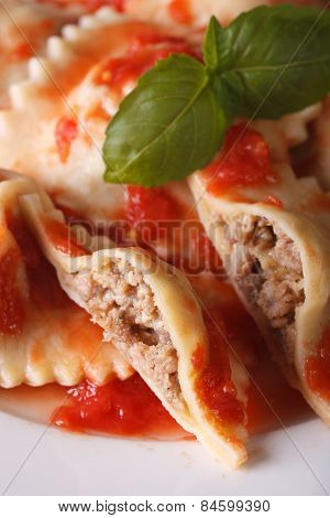 Ravioli Stuffed With Meat In Tomato Sauce, Vertical