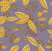 pic of berries  - Cranberry vector pattern with leaves and berries - JPG