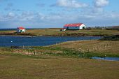 pic of falklands  - Farm buildings on the coast of Bleaker Island in the Falkland Islands - JPG
