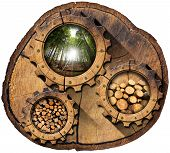 stock photo of cutting trees  - Section of tree trunk with wooden gears green forest trunks of trees cut and stacked dry cut firewood logs in a pile - JPG