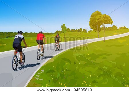 Three cyclists on summer rural road.