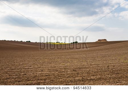 Farm Landscape With Plowed Field