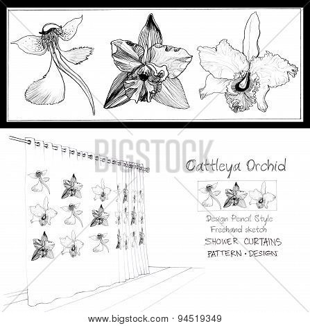Shower Curtain Vanda Orchid Cattleya Pincil Sketch