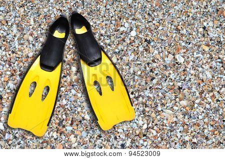 Yellow Fins And Sand Beach