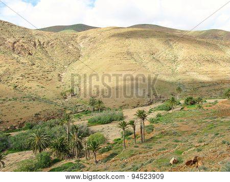 The valley of Vega de Rio Palmas