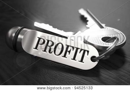 Keys to Profit. Concept on Golden Keychain.