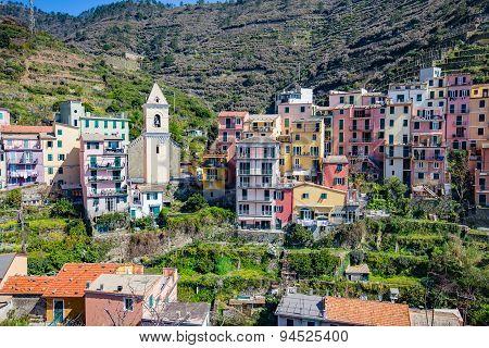 Manarola In La Spezia, Italy