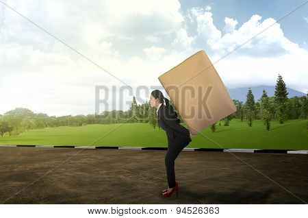 Asian Business Woman Carrying Brown Package On His Back