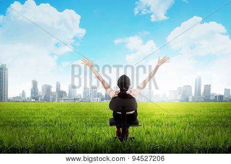 Business Woman On The Meadow