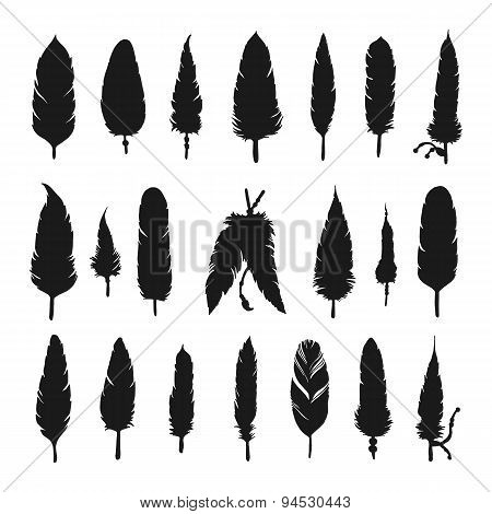Collection of vector silhouette feathers