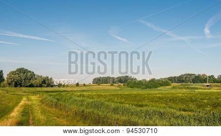 Rural Landscape In Springtime