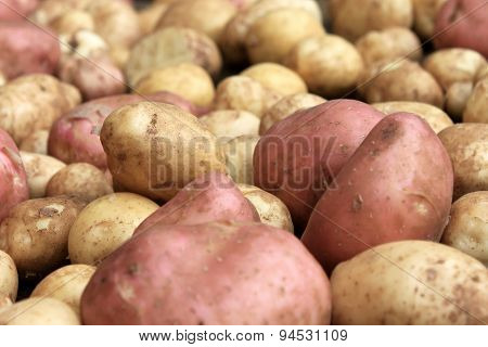 potatoes raw vegetables food on sacking for pattern texture and background