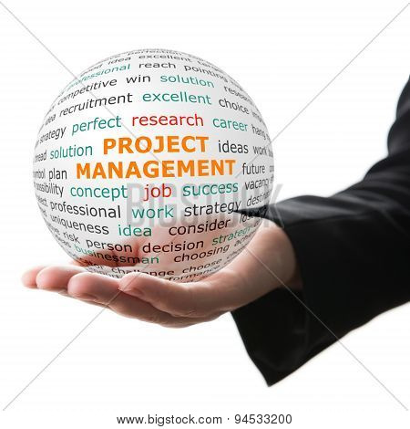 Concept Of Project Management In Business