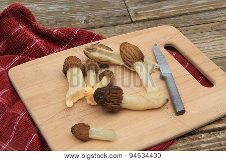 Wild Moral Mushrooms on a Cutting Board