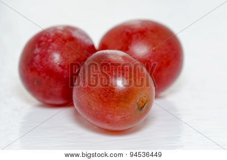 Three Tasty Grapes
