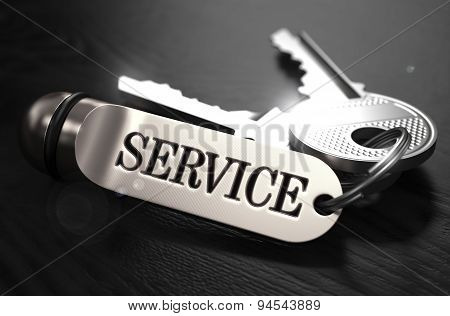 Service Concept. Keys with Keyring.